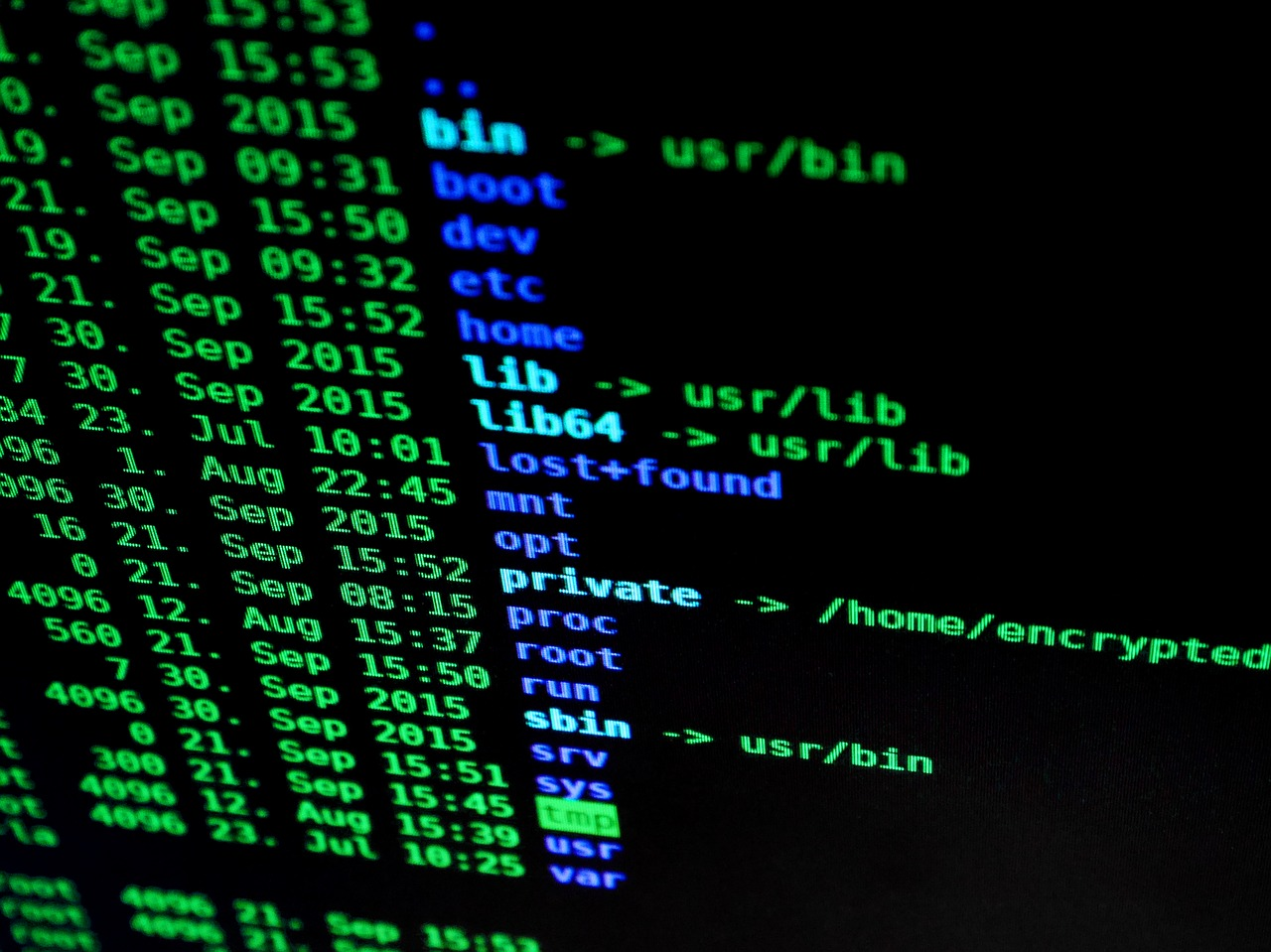How Essential Are Professional Data Protection Services to Businesses?