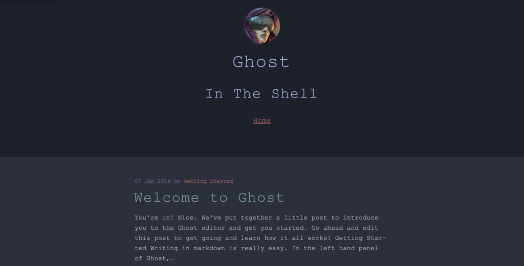 the shell ghost theme