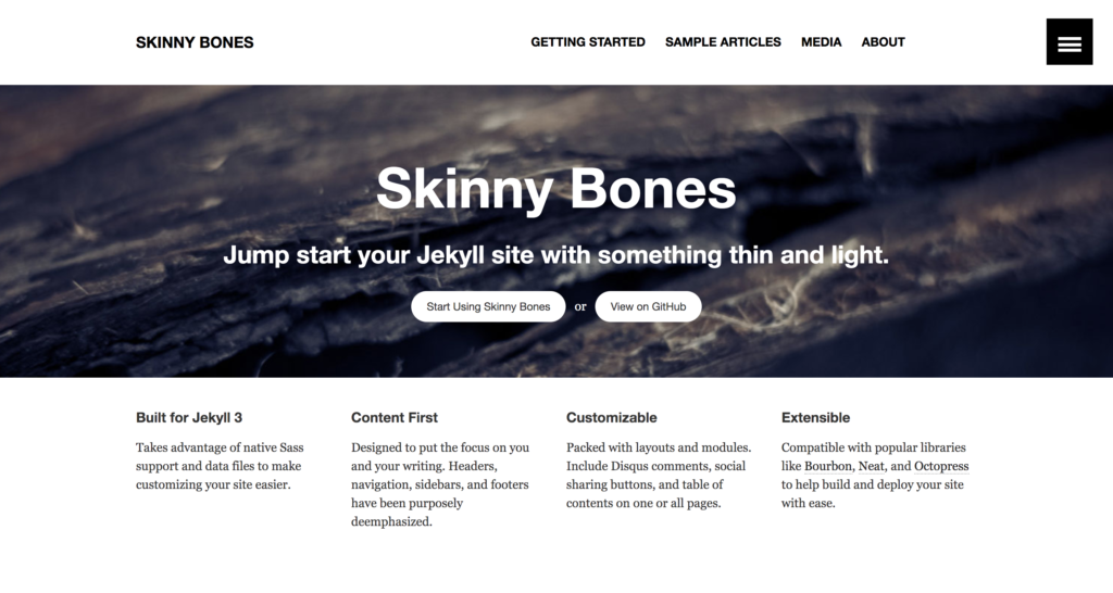 skinny bones theme preview